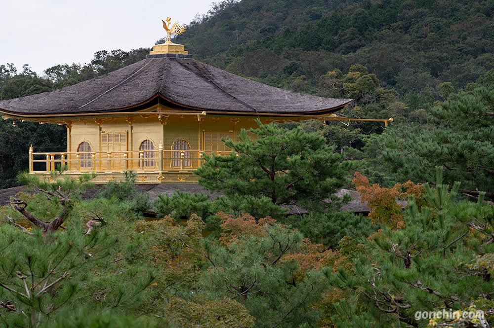 上から見下ろした金閣寺の舎利殿