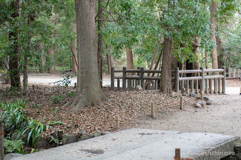 糺の森のロケハン3