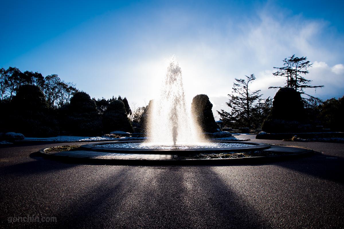 京都植物園の噴水