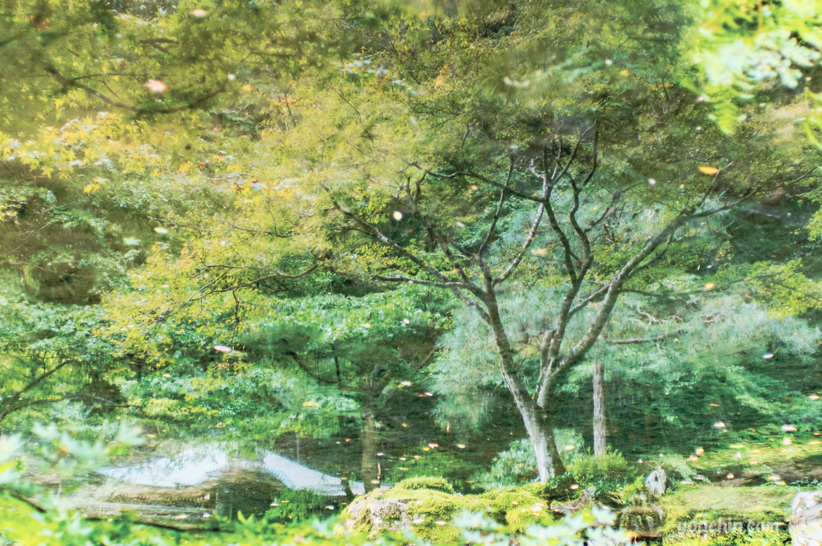 南禅院のリフレクション写真